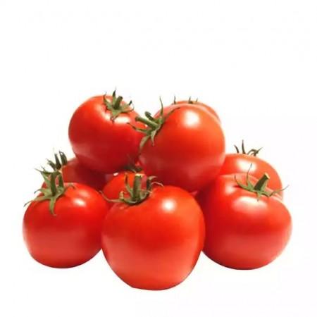 Red Tomato (Net Weight ± 10 gm)