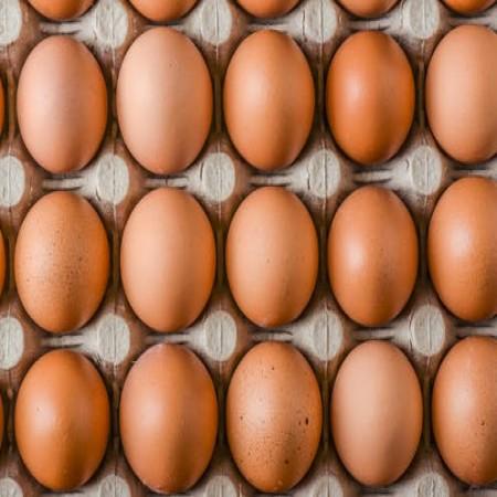 Chicken Eggs (Layer) 12 pcs